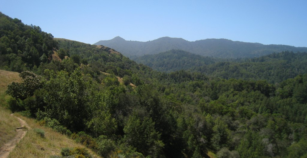 View of the lower part of the MMWD w/ Mt. Tam in the background